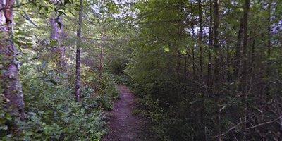 Headwaters Reserve Salmon Creek Trail, Fortuna, CA 95540, USA